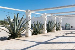 Patio with agave at Masseria Potenti in Puglia Photographer Maria Teresa Furnari