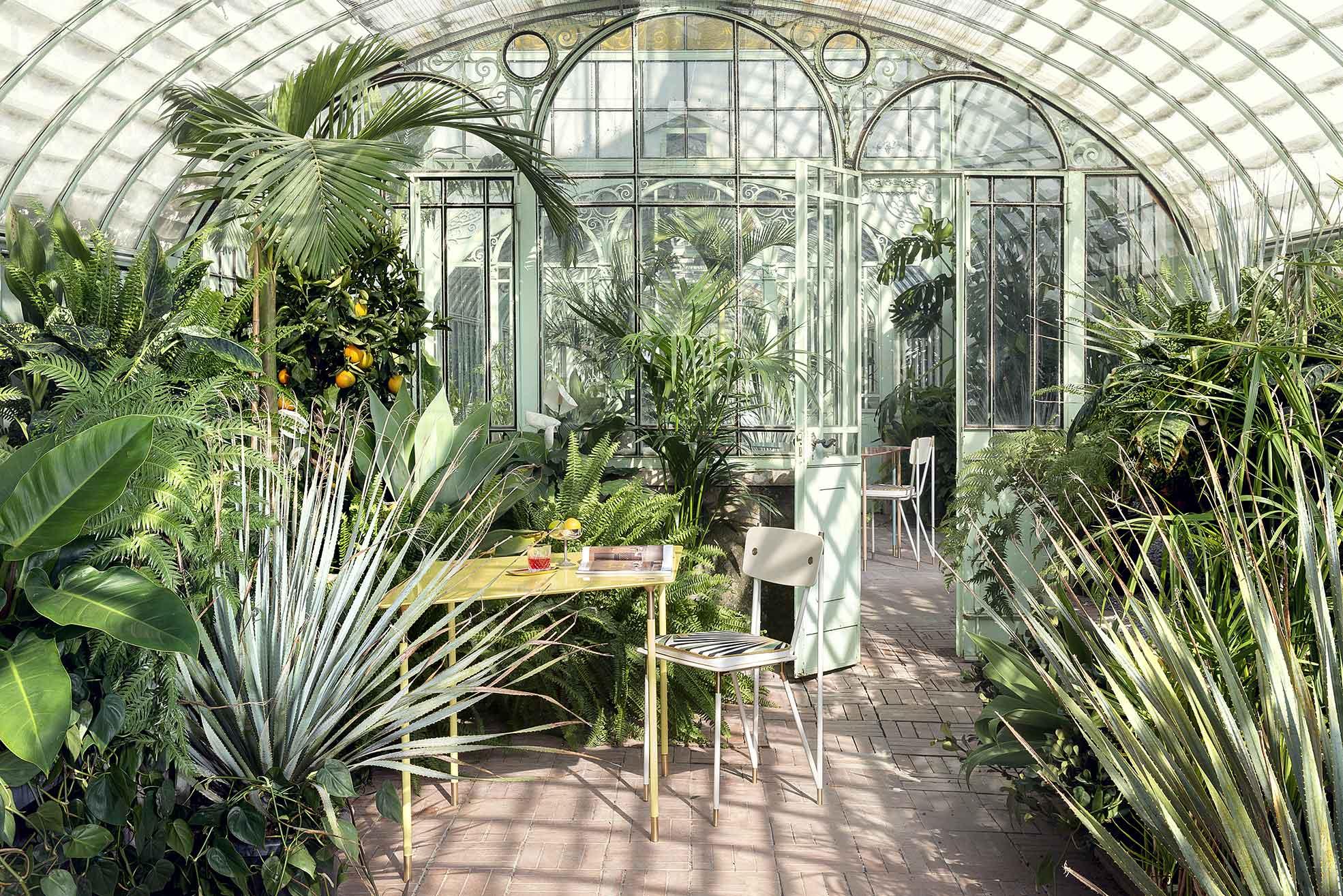 Aquiloni collection of the designer Derek Castiglioni shooted in a greenhouse for AD USA Photographer Maria Teresa Furnari