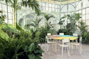 Aquiloni collection of the designer Derek Castiglioni shot in a greenhouse for AD USA Photographer Maria Teresa Furnari