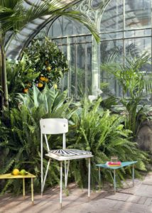 Chair and coffee tables of Aquiloni collection of the designer Derek Castiglioni shooted in a greenhouse for AD USA Photographer Maria Teresa Furnari