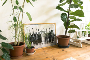 Detail of black and white photo and plants in Cinema Flora Photographer Maria Teresa Furnari