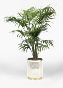 Still life of vase with kenzia of Pois Outdoor Collection Design by Derek Castiglioni Photographer Maria Teresa Furnari