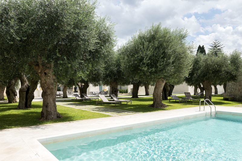 GSwimming pool and olive trees in La fiermontina resort in Lecce Photographer Maria Teresa Furnari